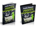 Thumbnail Public Domain Profits - eBook and Videos