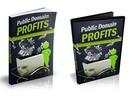 Thumbnail Public Domain Profits - eBook and Videos