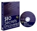 Thumbnail SEO Secrets Uncovered (PLR)