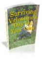 Thumbnail Surviving Valentines Day On Your Own (PLR)