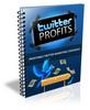 Thumbnail Twitter Profits (PLR)