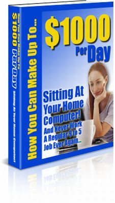 Pay for $1000 Per Day from Your Computer (PLR)