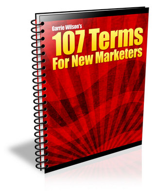 Pay for 107 Terms for New Marketers (PLR)