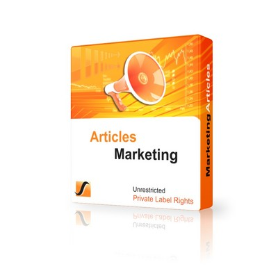 Pay for 25 Internet Marketing Articles - Feb 2011 (PLR)