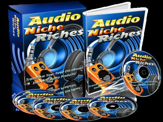 Pay for Audio Niche Riches - Video Series PLR