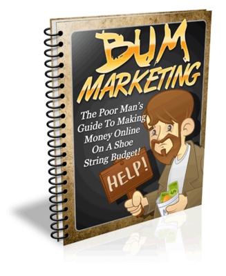 Pay for Bum Marketing - Website Template plr