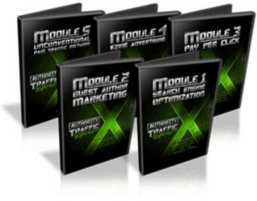 Pay for Authority Traffic X - Video Series PLR