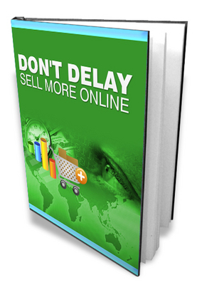 Pay for Dont Delay - Sell More Online PLR