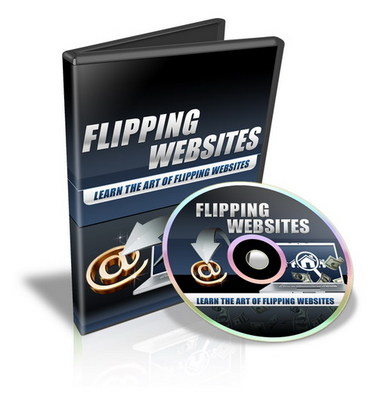 Pay for Flipping Websites - Video Series plr