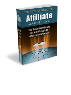 Pay for Expert Guide to Affiliate Marketing plr
