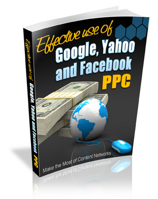 Pay for Effective Use of Search Engine PPC - Viral eBook PLR