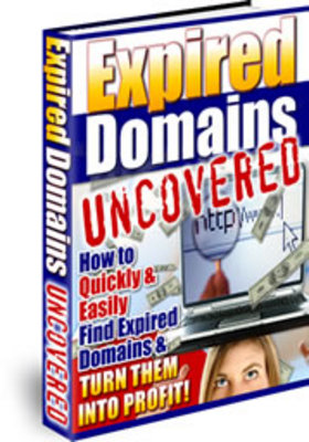 Pay for Expired Domain Names Uncovered (PLR)