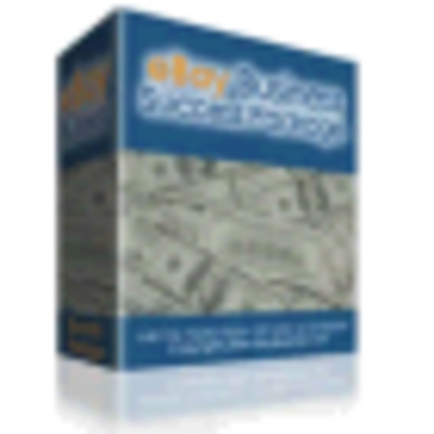 Pay for eBay Business Success Package PLR