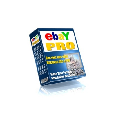 Pay for eBay Pro Selling Guide PLR