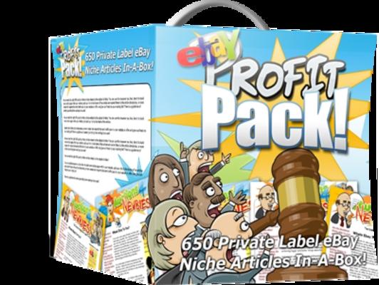 Pay for eBay Profit Pack PLR