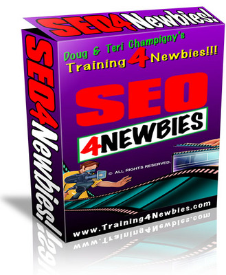 Pay for SEO 4 Newbies - Video Series
