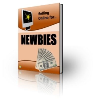 Pay for Selling Online for Newbies (PLR)