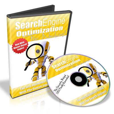 Pay for Search Engine Optimization for Newbies - Video Series plr