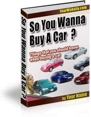 Pay for So You Wanna Buy a Car plr