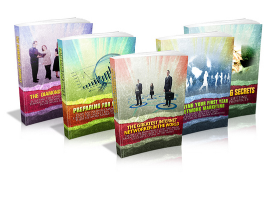 Pay for Network Marketing Series (Viral PLR)