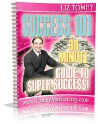 Pay for Success 101 (PLR)
