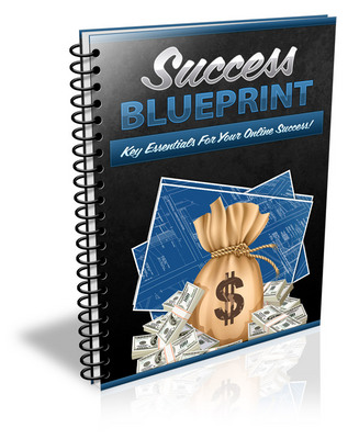 Pay for Success Blueprint (Viral PLR)