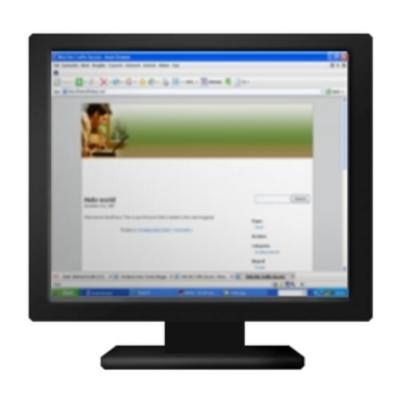 Pay for WordPress AdSense - Male Computingg