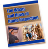 Thumbnail The Whats And Hows Of Home Inspection - PLR