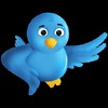 Thumbnail Twitscrape - Twitter Email Harvester - Harvest Live Emails