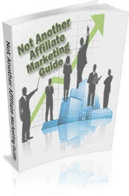 Pay for Not Another Affiliate Marketers Guide PLR