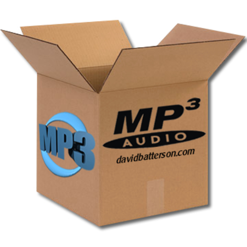 Hip Hop Sample in High Fidelity MP3 96 BPM Key of C