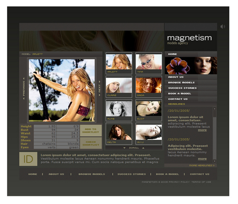 Pay for Modeling Agency Flash Website Template