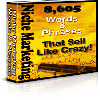 Thumbnail *NEW!*  8605 Niche Marketing Words And Phrases That Sell Like Crazy!