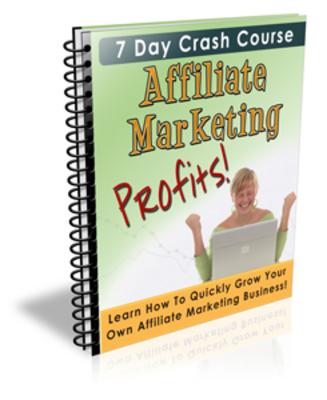*NEW!* Affiliate Marketing Profits 7 Day Ecourse With PLR