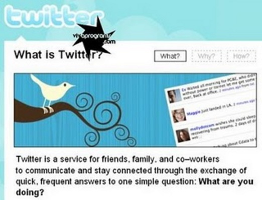 Pay for *NEW!* 4 Twitter Clones Scripts Start your Own Twitter site