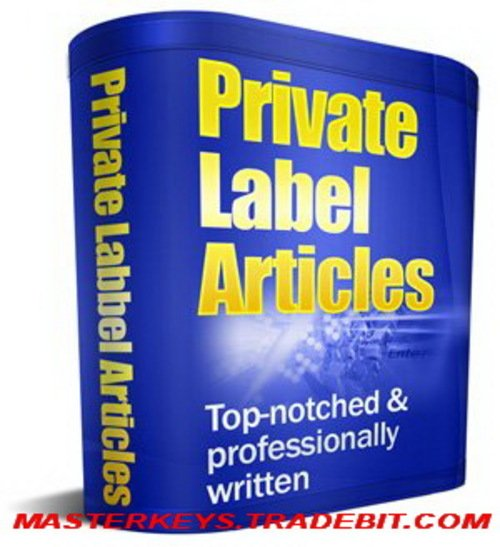 Pay for *NEW!* 6300 PLR Articles+ 5000 PLR Articles with PLR