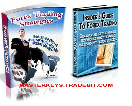 Pay for *NEW!* Forex PLR  eBooks Collection Package
