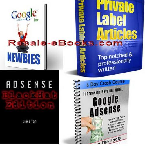 Pay for *NEW!* 4 Google Adsense eBooks Download Collection