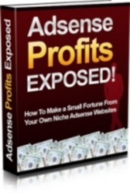 *NEW!*  Adsense Profits Exposed  New for 2009