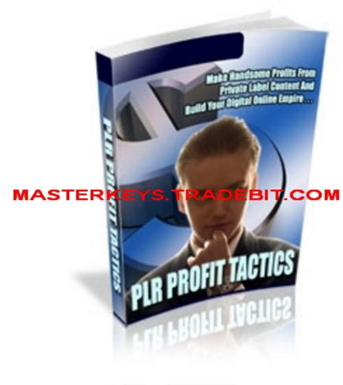 *NEW!* PLR Profit Tactics  PLR  eBooks Download