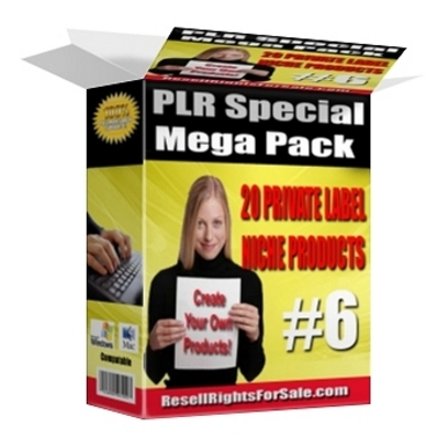 Pay for *NEW!* 20 PLR Reports That Stach Cash Into Your Pocket