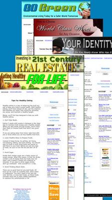 *NEW!* 26 Page Niche Websites with MRR & Salespage - Niche Templates