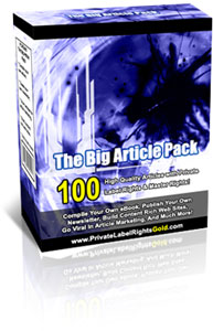 Pay for *NEW* The Big Article Pack | Get Full PLR & Master Rights to 100 High Quality Articles!