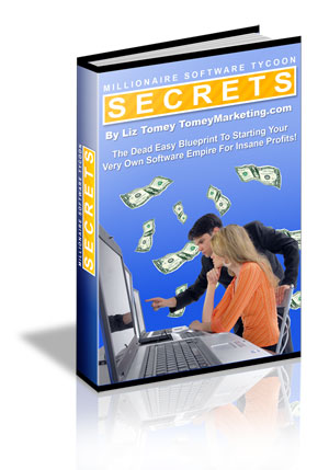 Pay for *NEW!*  Millionaire Software Tycoon Secrets - Liz Tomey - MASTER RESALE RIGHTS
