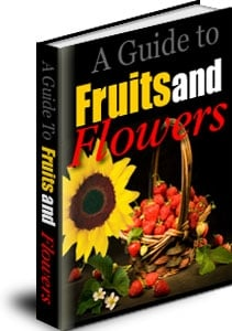 Pay for  *NEW!*  A Guide to Fruits and Flowers | Discover the Secrets to Fruits and Flowers! - Master Resale Rights