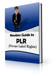 Thumbnail *NEW!*Newbie Guide To PLR | Learn The Magic Formula For Making a Fortune, Over and Over Again With Private Label Rights Products  - Master Resale Rights