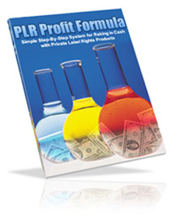 Pay for *NEW!* The PLR Profit Formula - Learn The Magic Formula For Making a Fortune, Over and Over Again With Private Label Rights Products