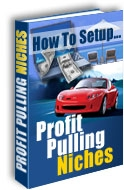 Pay for *NEW!*  How to Set Up Profit Pulling Niches eBook Resell Right
