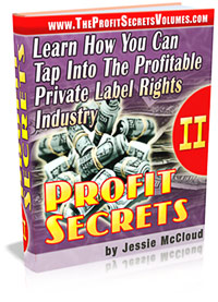 Pay for *NEW!* Profit Secrets Volume II (2): Learn How You Can Tap Into The Profitable Private Label Rights Industry