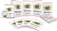 Thumbnail Profit from PLR - Done-For-You Private Label Rights Package